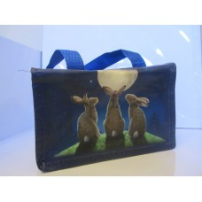 Moon shadows eco lunch bag